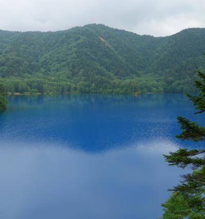 信州週末家出⑫ 志賀高原 木戸池キャンプと大沼池 ~空より青いよ 大沼ブルー の巻~