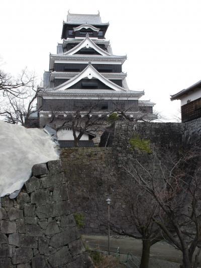 マイルで熊本旅 4日目熊本城見学ツアーに参加 5日目は東京に帰るだけ