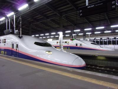 上越新幹線グリーン車で行く佐渡島の旅 前編 ラストランの2階建て新幹線Maxグリーン車で新潟へ & 萬代橋を散歩してジェットフォイルで佐渡へ