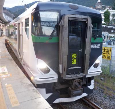 E OCT 2021  プチテツ13・・・・・③武蔵野・青梅奥多摩号
