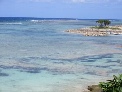 沖縄北部と古宇利島 南国ブルーを求めてバスひとり旅