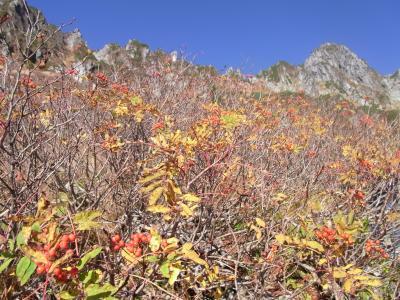 2021秋山旅・木曽駒ケ岳千畳敷カール~草紅葉の絨毯♪