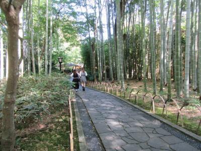 修善寺温泉にて(その1) 湯回廊菊屋と竹林の小径、独鈷の湯など