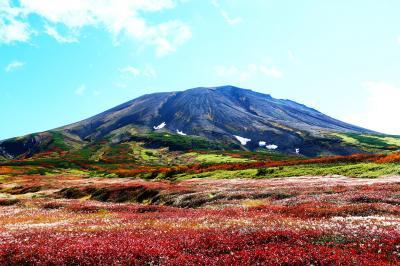 神々の遊ぶ庭、紅葉の旭岳トレッキング
