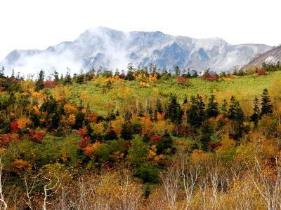 2021年 秋の信州(3)紅葉の栂池高原・自然園を歩く