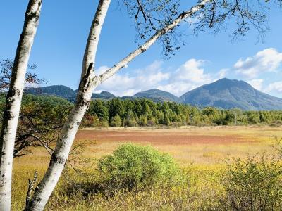 戦場ヶ原 秋と自然と怖さ…の物語