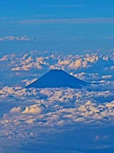 富士山 JAL260便 ~望見 雲海の上に雄姿 ☆公開写真29万枚超 -290,032枚記録
