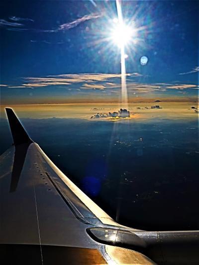 JAL260便 大井川 富士山 伊豆/三浦半島 羽田空港へ ☆夕陽を浴びて 水面/銀翼輝く