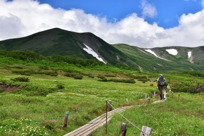 大雪高原温泉と緑岳コース散策2021夏~美しい彩りのお花畑~(北海道)