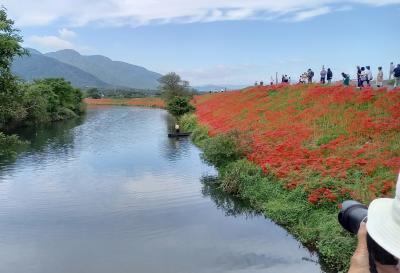 三婆を案内して  津屋川自然の郷と千代保稲荷へ