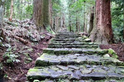 高野山から熊野三山そして白浜へ電車とバスをひたすら乗り継いで東北からの一人旅。