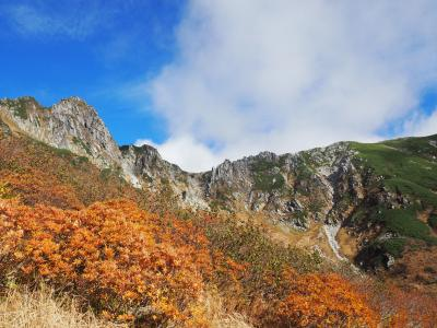 紅葉の千畳敷カール一人旅1*・゜・*千畳敷カールから木曽駒ケ岳へ*・゜・*