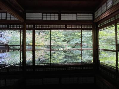 夏のような秋を楽しむ京都、観光編、後編。