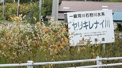 ~札幌・千歳・苫小牧・夕張・余市・小樽・洞爺湖の旅~(2日目)