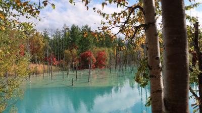 紅葉の始まった北海道 富良野・美瑛の旅 2泊3日 その1