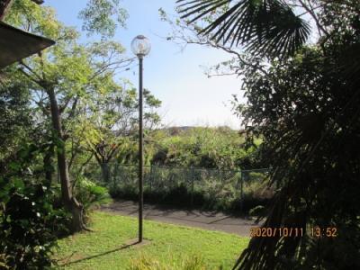 我孫子市の若松・カフェ・ガーデン ハセガワ・手賀沼湖畔