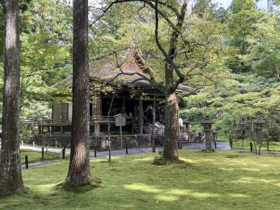 初秋の京都 その1 大原 三千院・宝泉院・寂光院