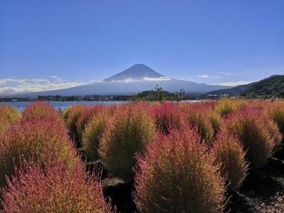 秋晴れ 富士山を見に