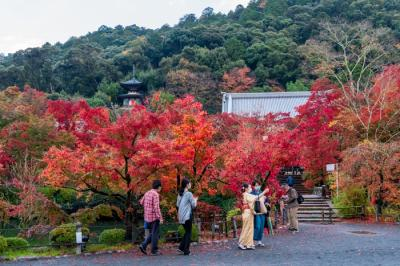 錦秋の京都 2020   南禅寺  永観堂