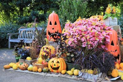 横浜イングリッシュガーデン、ハロウィン装飾と秋バラが彩る・・・