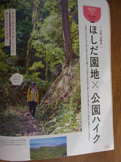 大阪交野の星のブランコ(吊り橋)