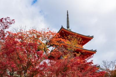 錦秋の京都 2020 清水寺