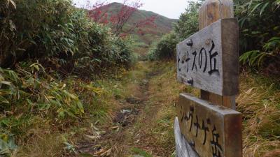 北海道トレッキング ニセコ連山(神仙沼~シャクナゲ岳~チセヌプリ)
