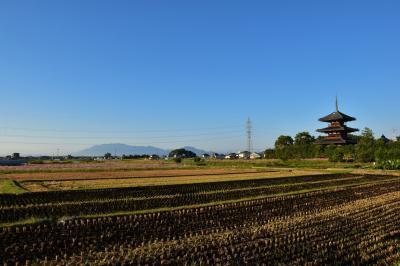 朝観光(45-2) 奈良(斑鳩1)