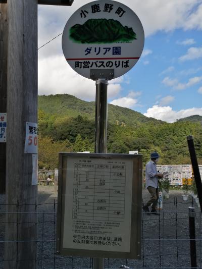 小鹿野町ダリヤ園&花園道の駅