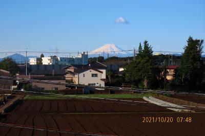 久し振りに積雪した素晴らしい富士山が見られました