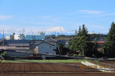 ふじみ野市から見られた富士山①