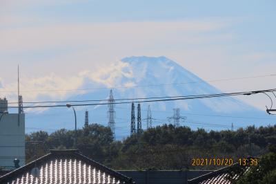ふじみ野市から見られた富士山②