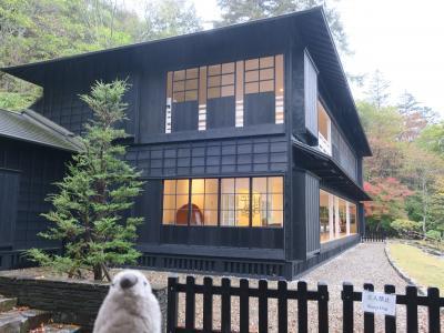 ちょっと贅沢な日光小旅行 紅葉の中禅寺湖と東武ワールドスクエアwithゴエモン Part1