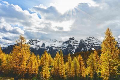 バンフ国立公園 黄葉のハイキング@モレーン湖