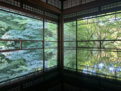 京都インスタ映えめぐり
