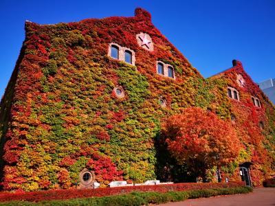 秋の札幌・支笏湖周辺散策