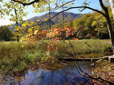 長野の秘境!紅葉の「奥裾花自然園」ハイキングと鬼無里のおやき