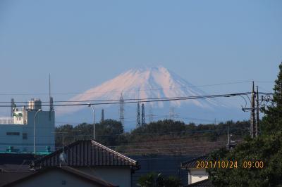 10月24日に見られた富士山