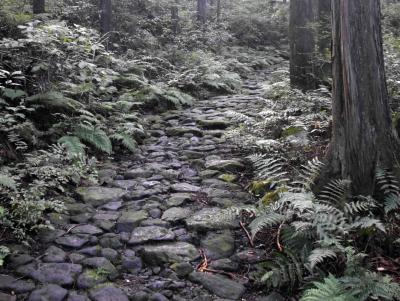 箱根 スコップ登山終了後は・・・?