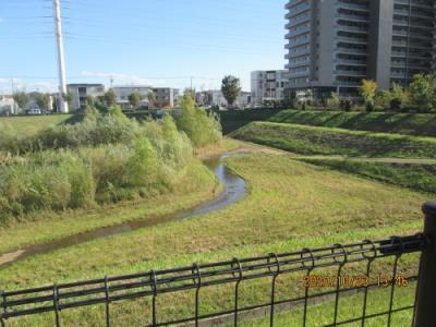 流山市のおおたかの森南・市野谷水鳥の池・調整池・入場禁止