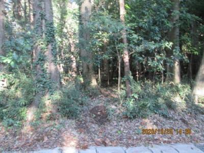 流山市の市野谷・市野谷の森・公園予定地非公開