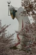 春の万博公園