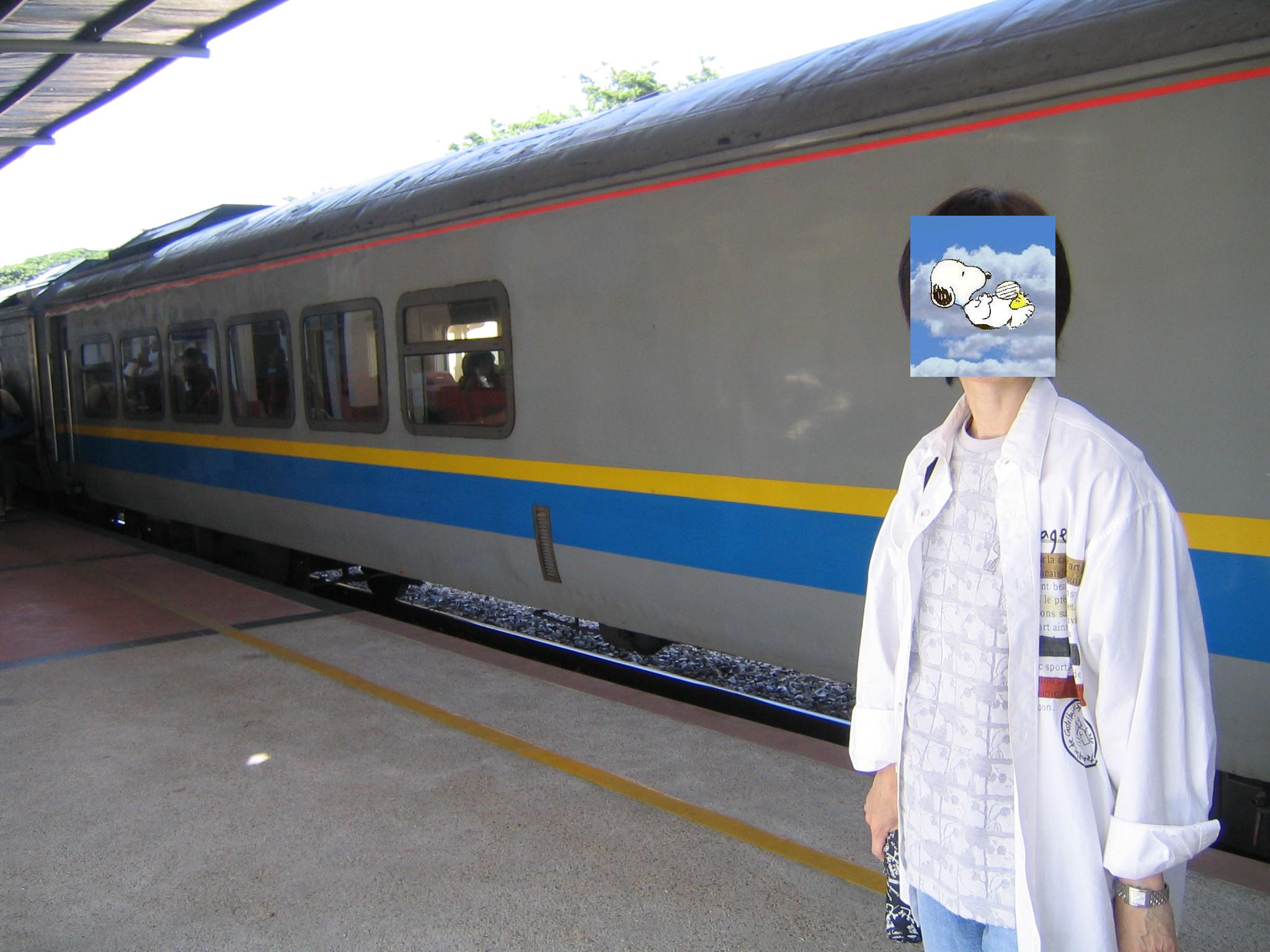 マレー鉄道に乗りたくてマラッカ...