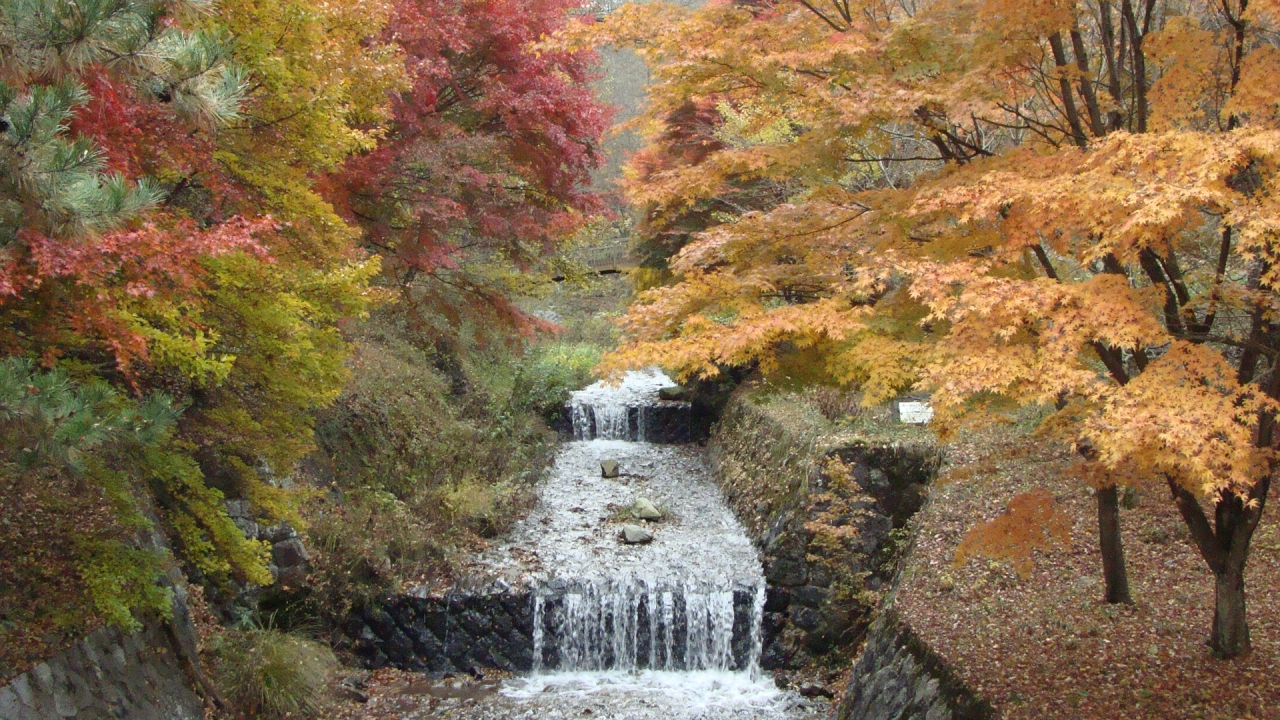 フランス式階段流路・・・牛伏川...