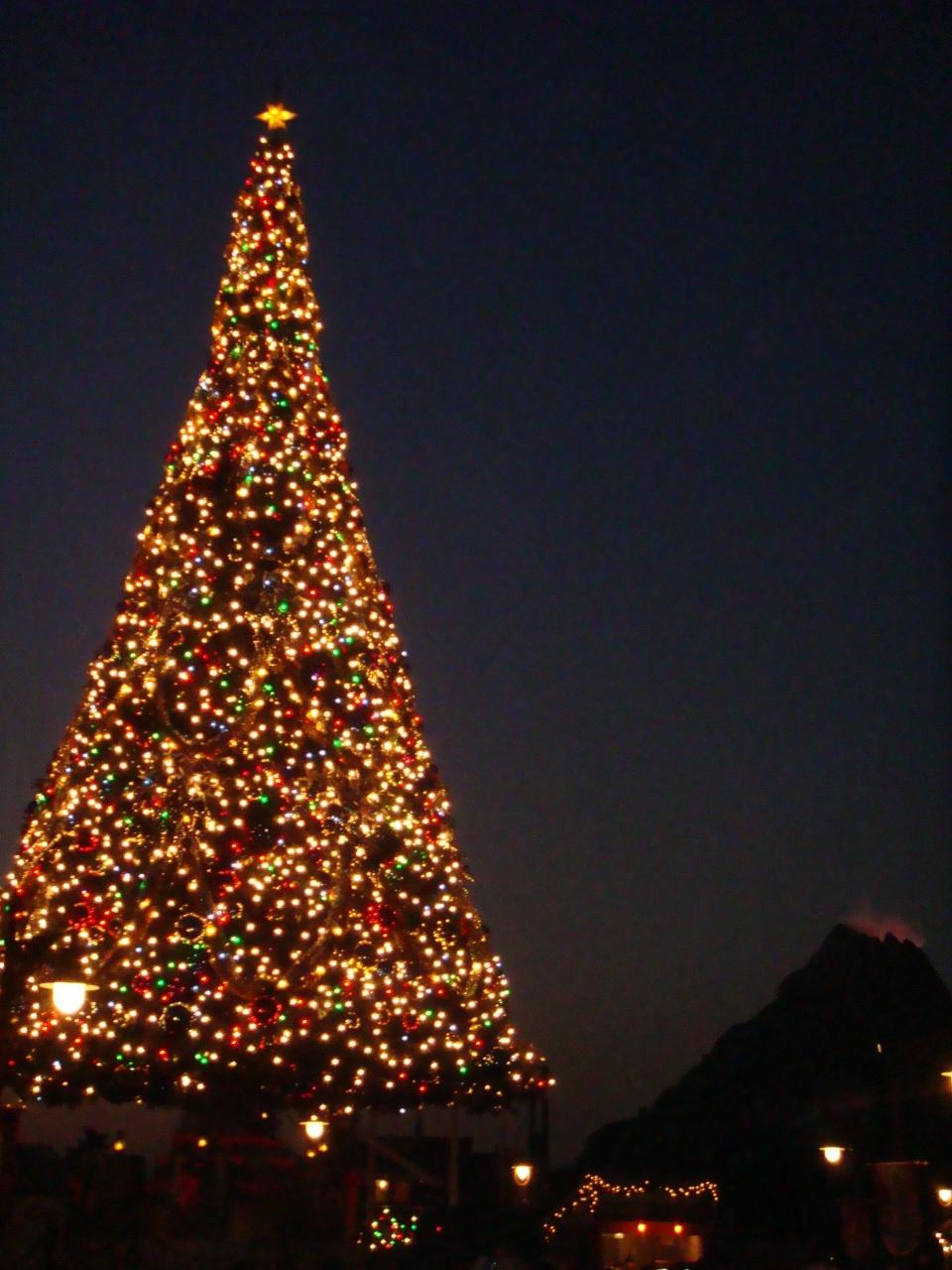 東京ディズニーリゾート 25周年 クリスマス☆?』東京ディズニーリゾート