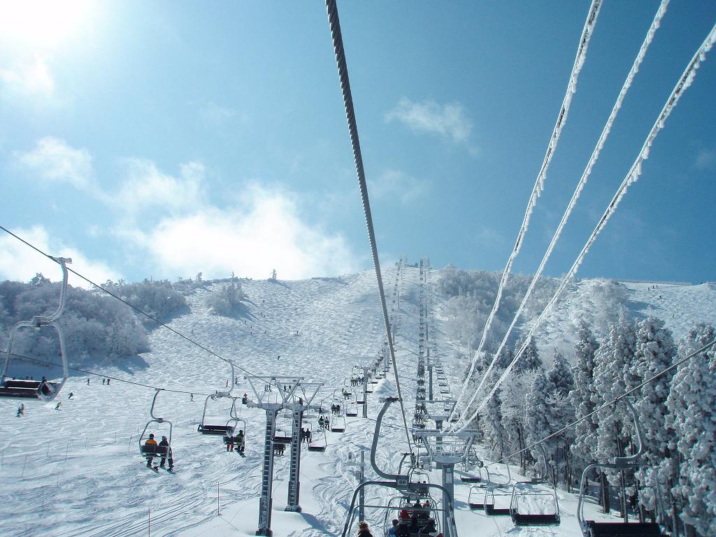 北 場 ハチ スキー