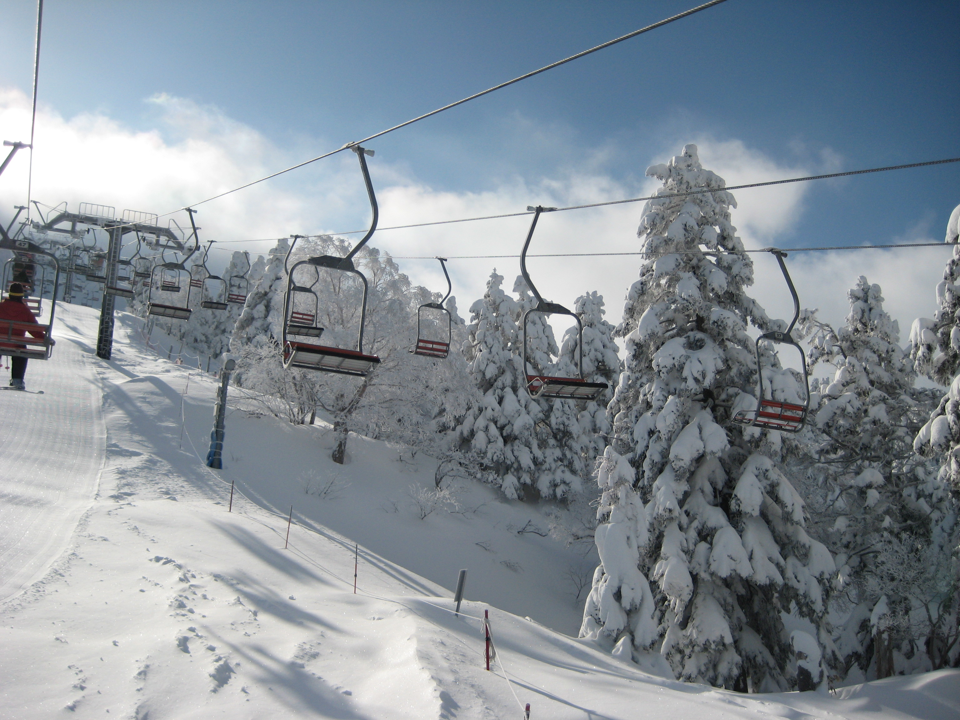 蔵王 スキー 場 山形
