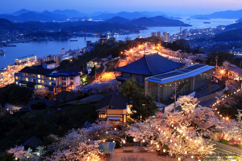 「千光寺公園夜桜」の画像検索結果