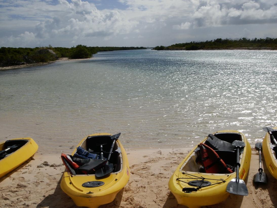 2011.12 カリブ海クルーズ⑥ター...
