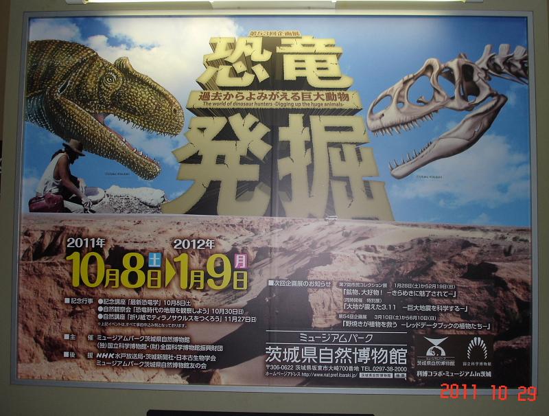 自然 博物館 県 茨城
